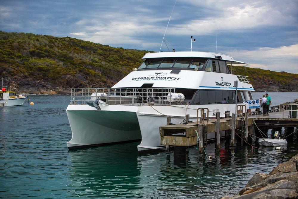 Whale Watch Western Australia's vessel
