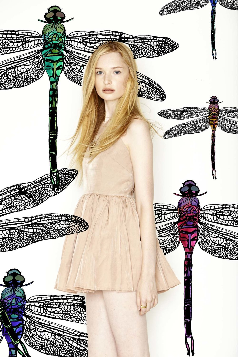 dragonflies_1340_c.jpg