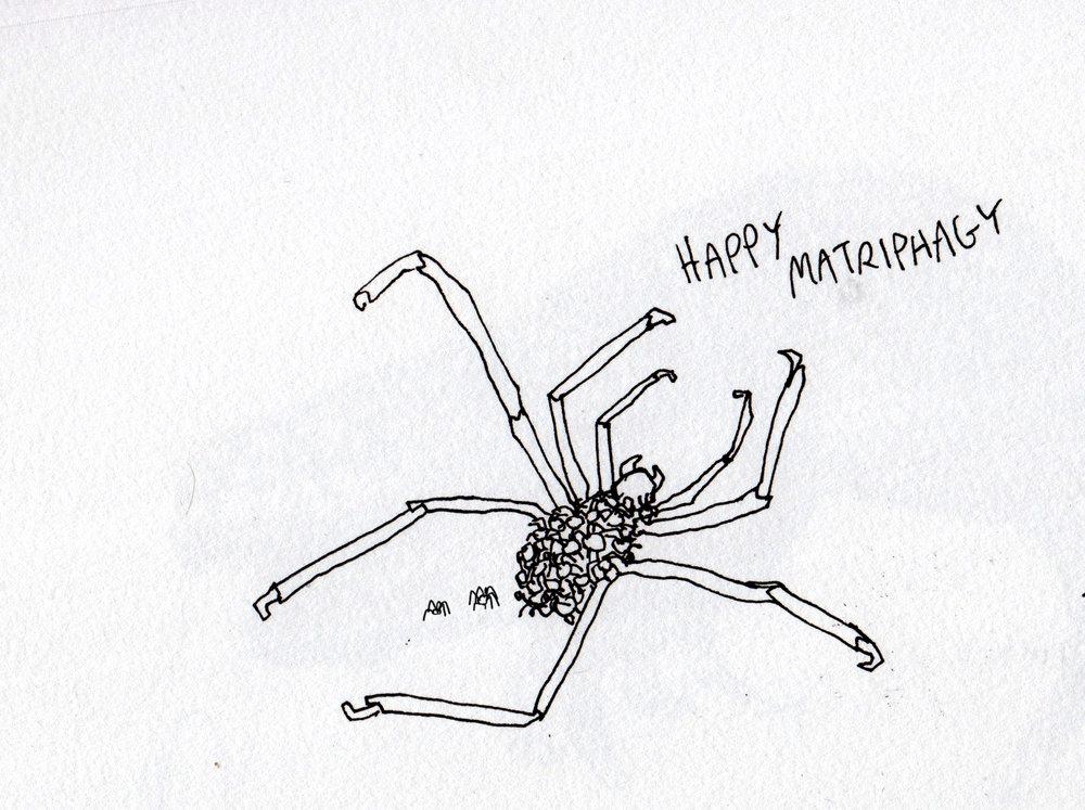 happy matriphagy.jpg