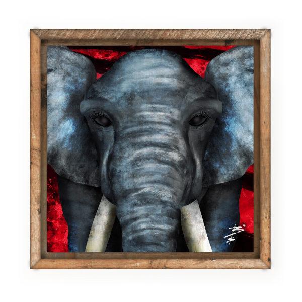 SQC Thumbnails 600px big eyes elephant print.jpg
