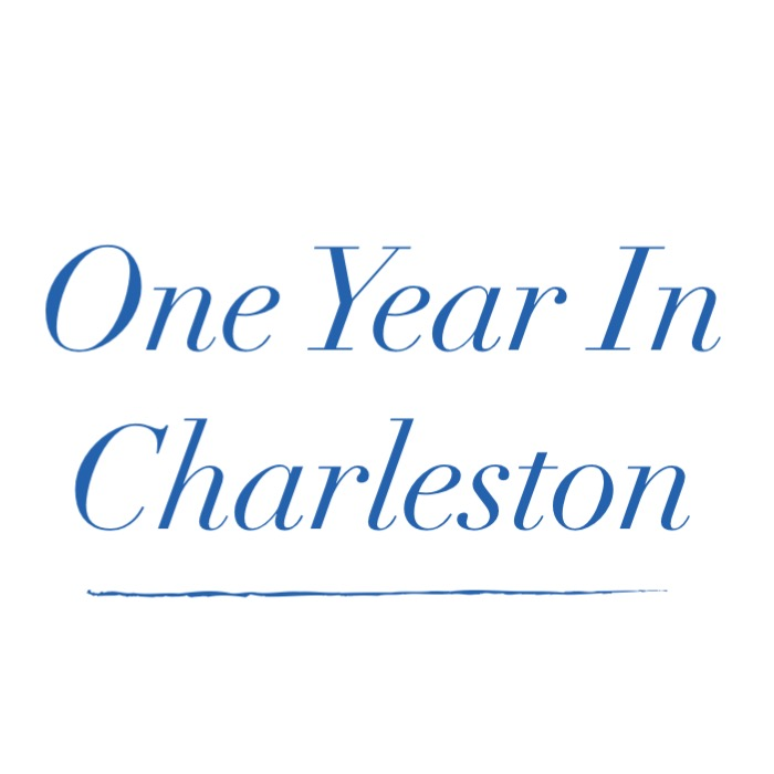 One Year in Charleston