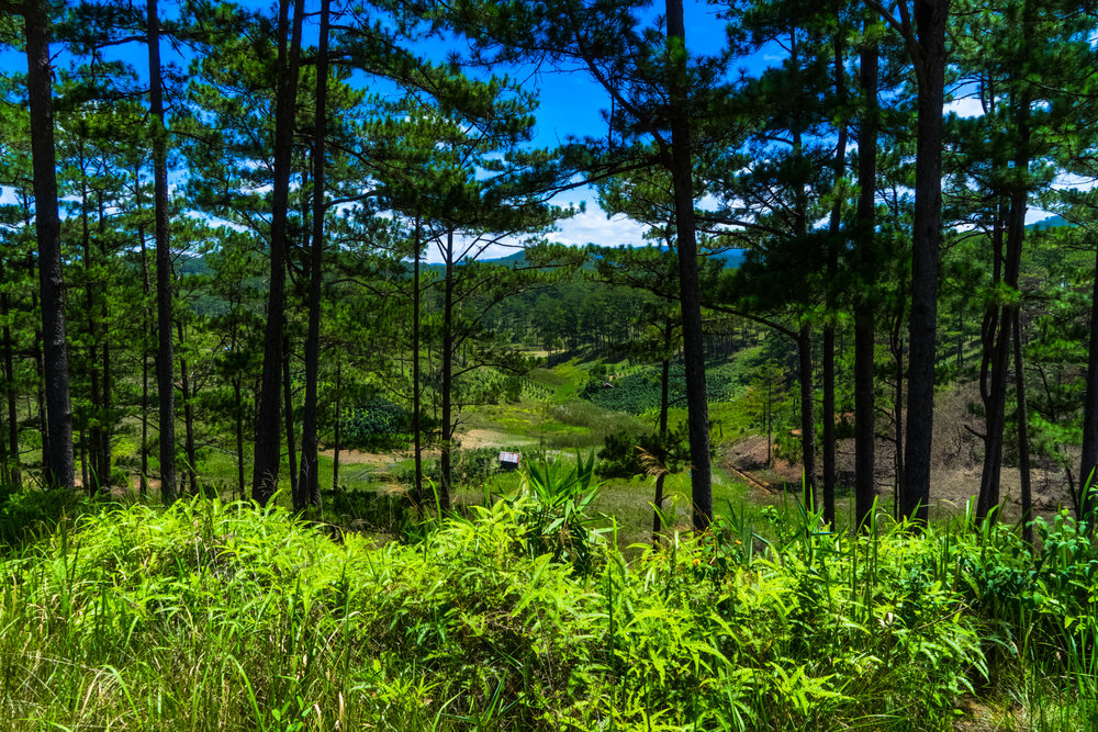 A farm in the mountains next to the road on the way to Nha Trang from Dalat