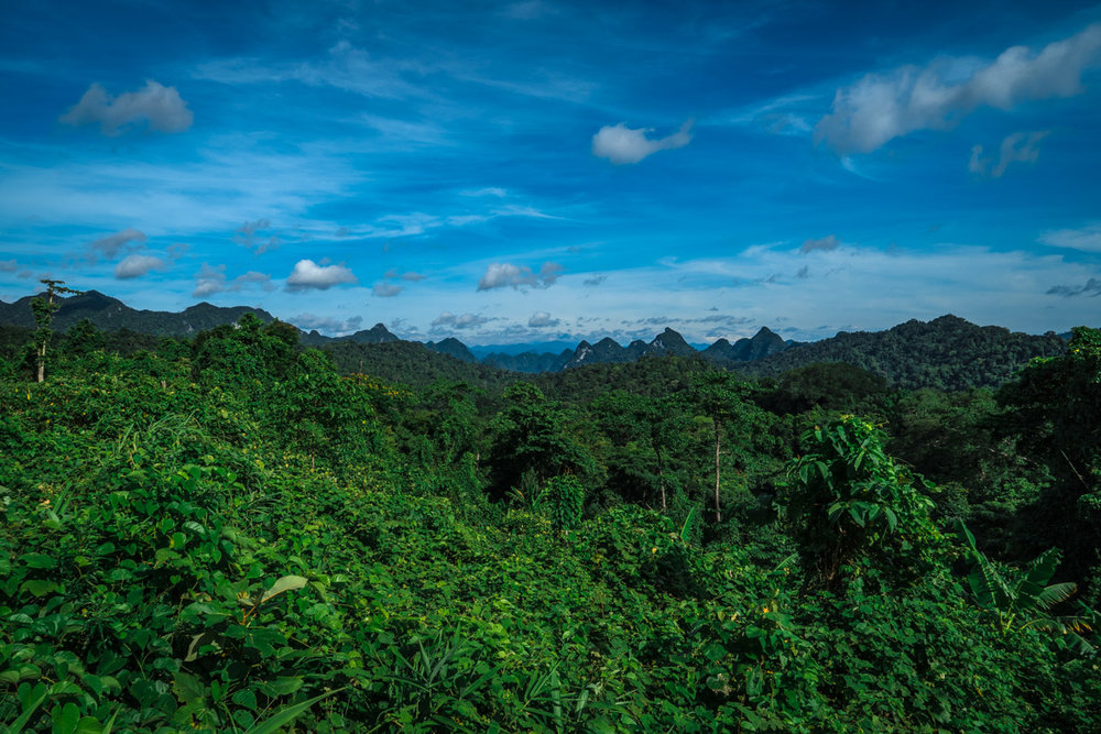 The endless jungle and mountain views on the Ho Chi Minh Trail north of Phong Nha.