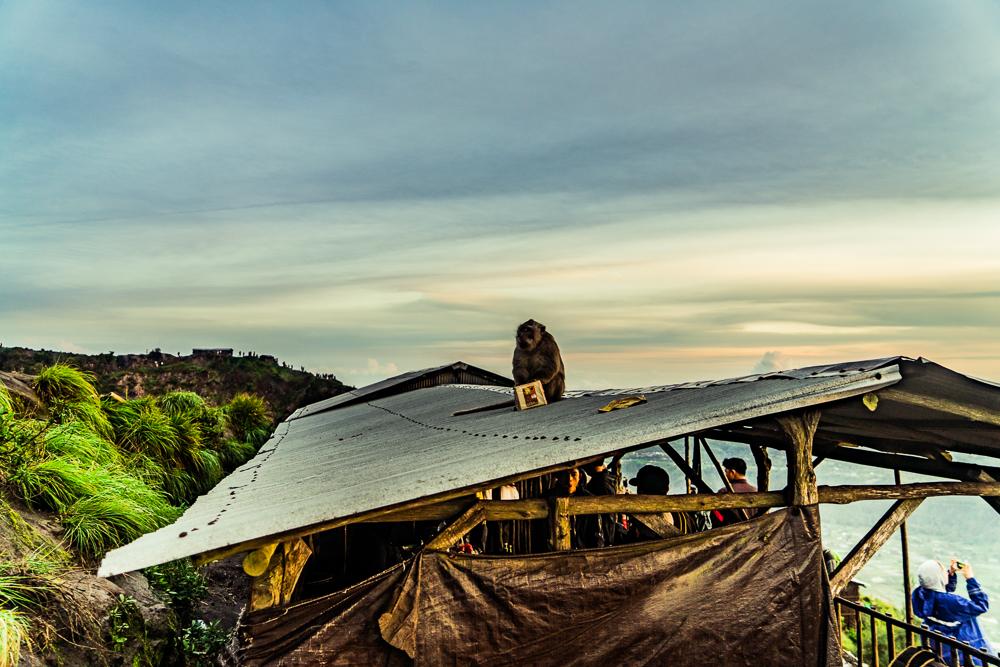 Mount Batur Sunrise Hike (5 of 37).jpg