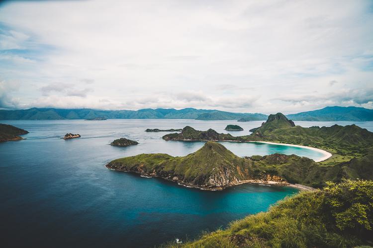 Komodo Dragon - Flores Island (65 of 96).jpg