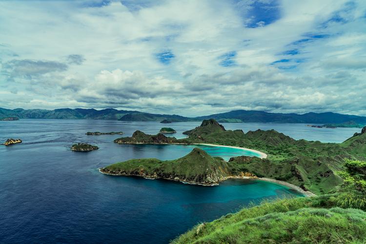 Komodo Dragon - Flores Island (76 of 96).jpg
