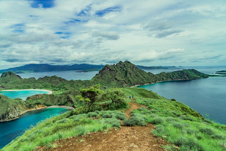 Komodo Dragon - Flores Island (78 of 96).jpg