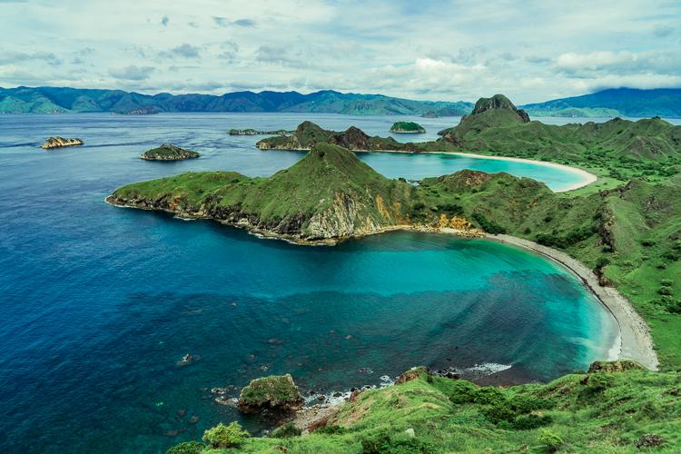 Komodo Dragon - Flores Island (83 of 96).jpg