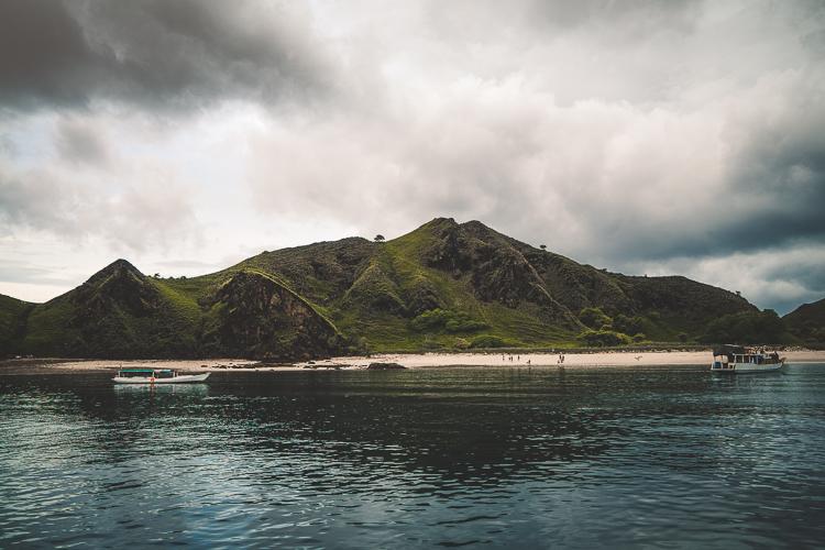 Komodo Dragon - Flores Island (55 of 96).jpg