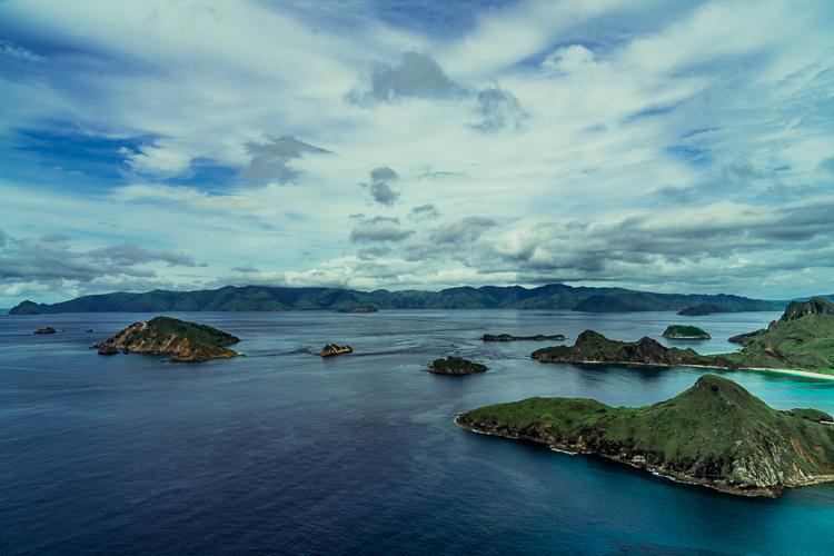 Komodo Dragon - Flores Island (73 of 96).jpg