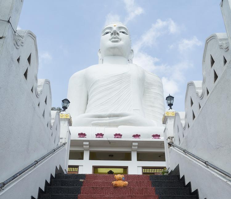 Big Buddha with Real Annoying Teddy
