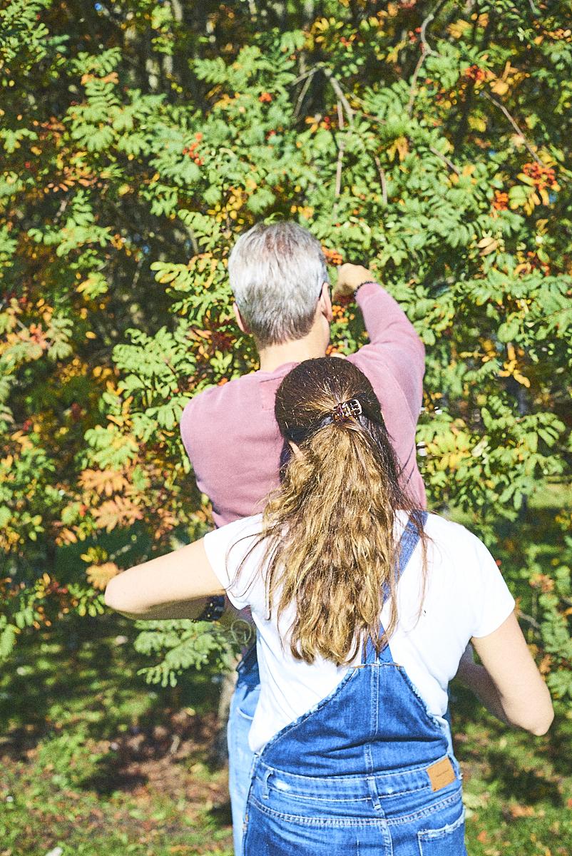 rowanberry harvest_24092017_SAF_SM_SM 6.jpg