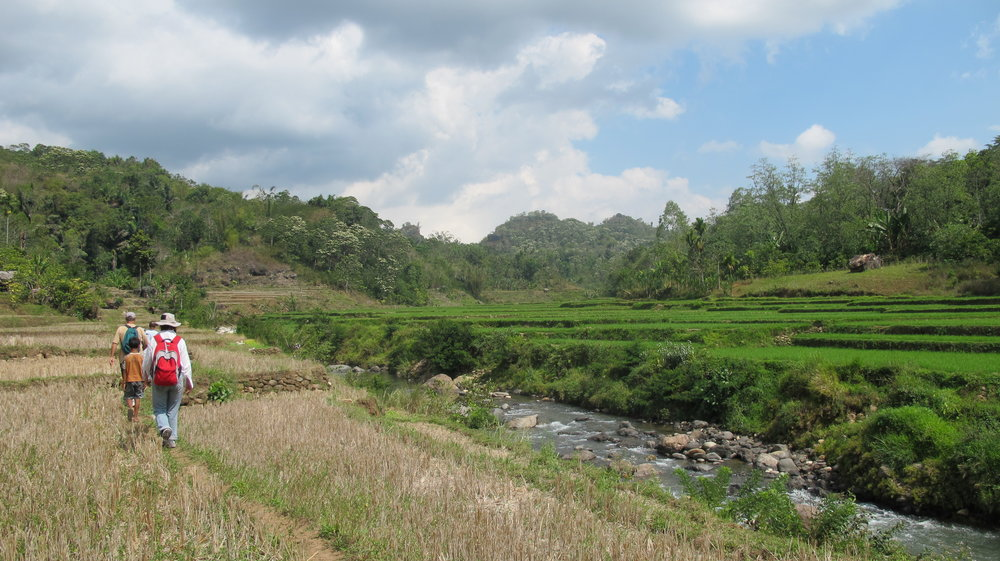 Local and introduced hominins in the Wae Racang river valley