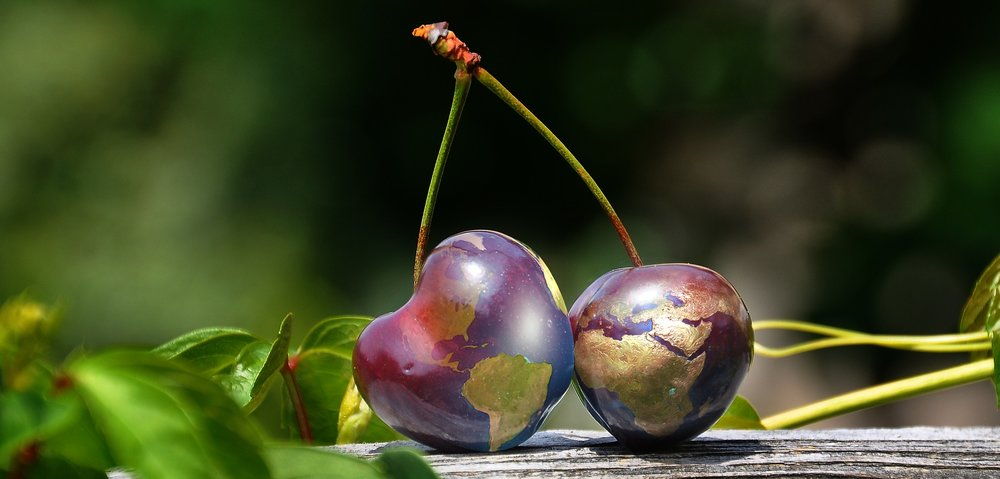 Cherries as a globe.jpg