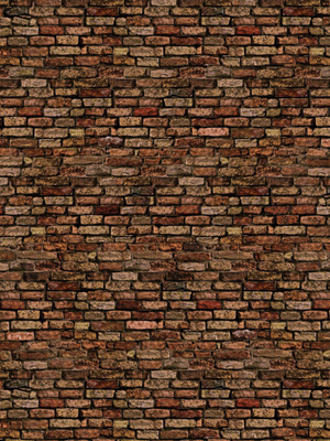 Crimson Brick Wall 12'w x 10'h