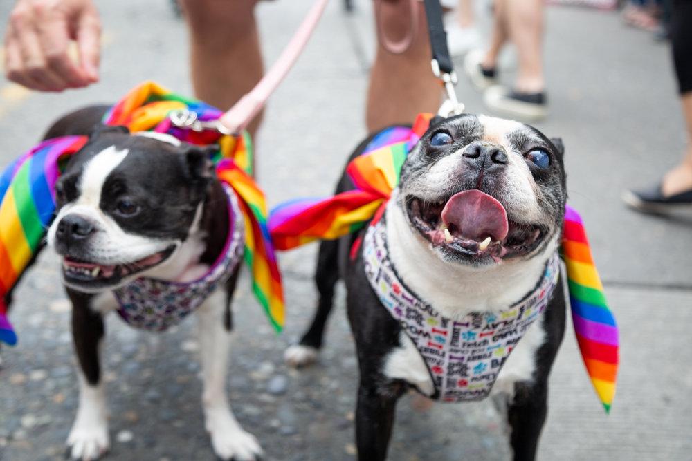 PrideFest 014.jpg