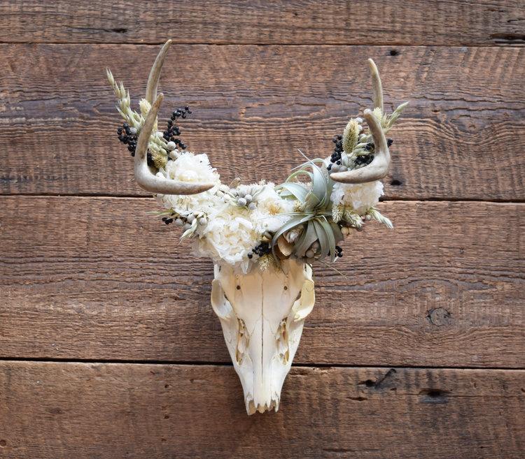 Meghan Lacroix, Deer Skull with Preserved Peonies