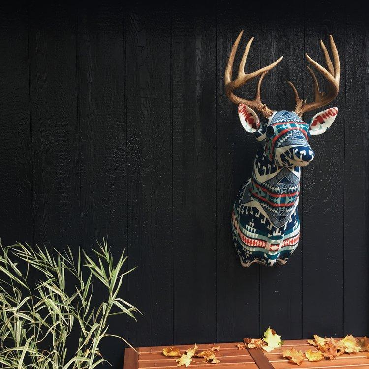 Faraway Lovely Buck in Pendleton wool