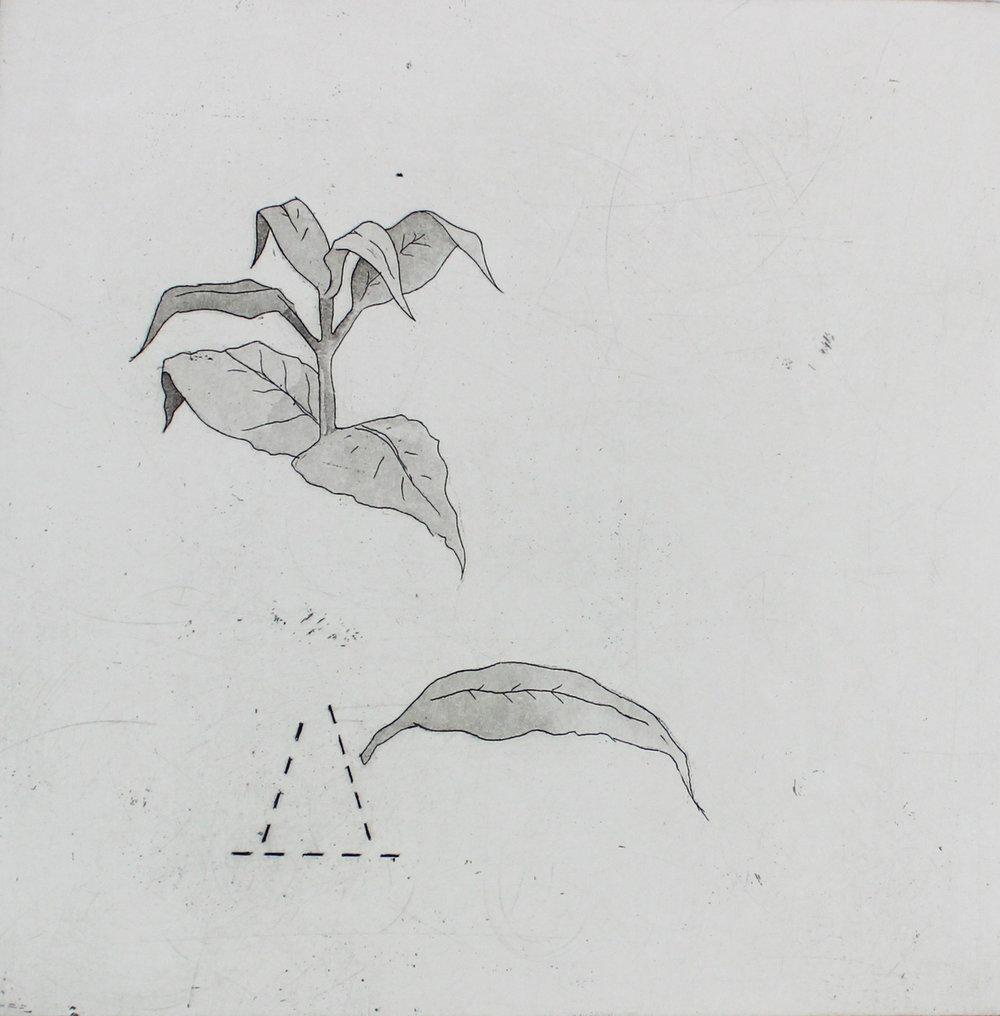 Severed Leaf