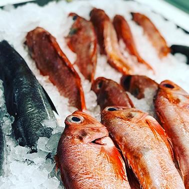 Fish lady -
