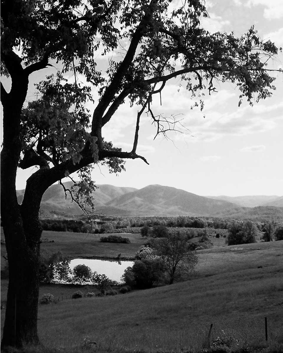 Blue Ridge Valley #2