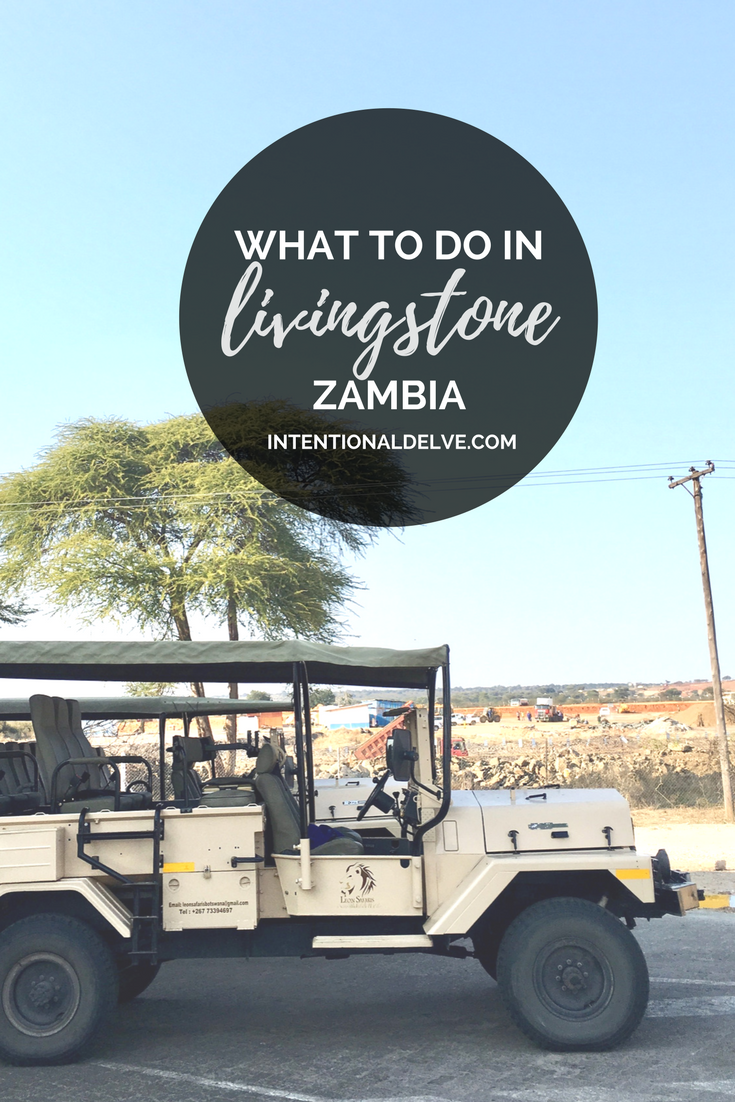 guide to livingstone zambia (1).png