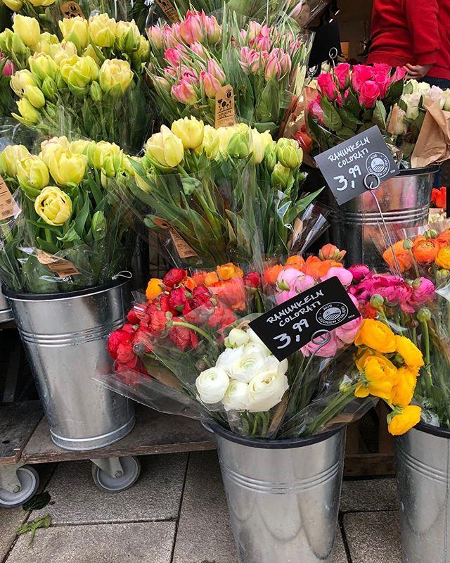 Springtime in Hamburg 💐🇩🇪 #blumen