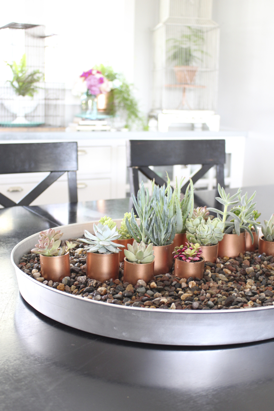 This succulent planter is an easy DIY gift that can easily be made by a toddler. It is perfect for parents, grandparents, aunts, uncles and others.