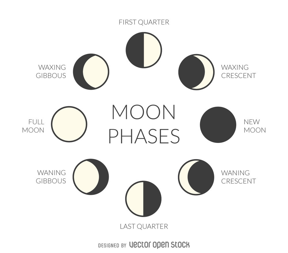 299bb9c20f156020305e519c468d8f02-illustrated-moon-phases.jpg