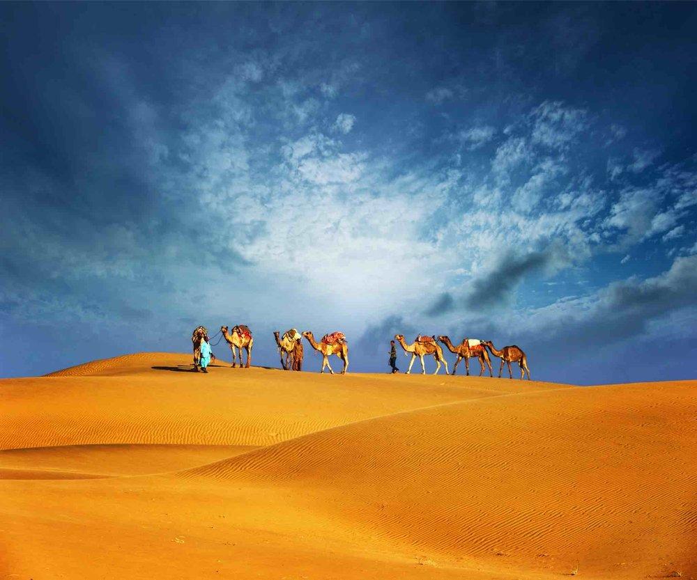 Enjoy your visit to Dubai