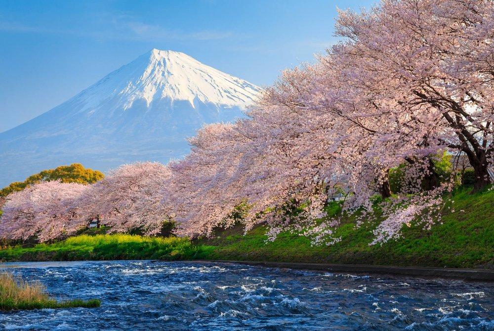 Amazing Japan, Visit Japan