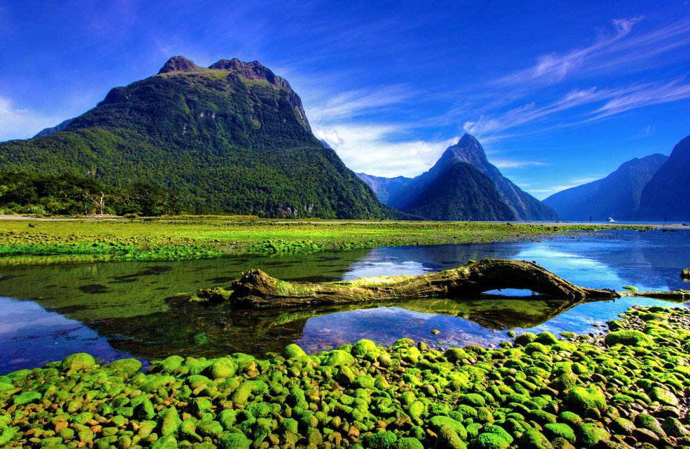 New Zealand Guide for iPhone, iPad & AppleWatch
