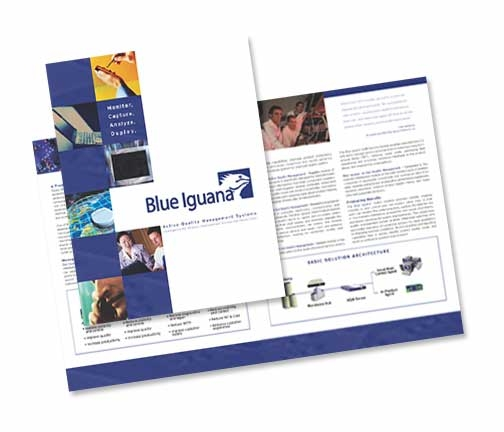 blueiguana.image.JPG
