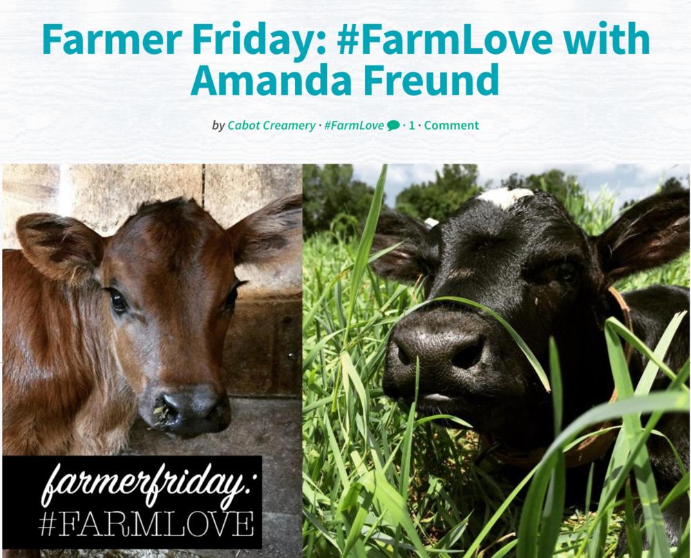 farm love blog post for cabot creamery