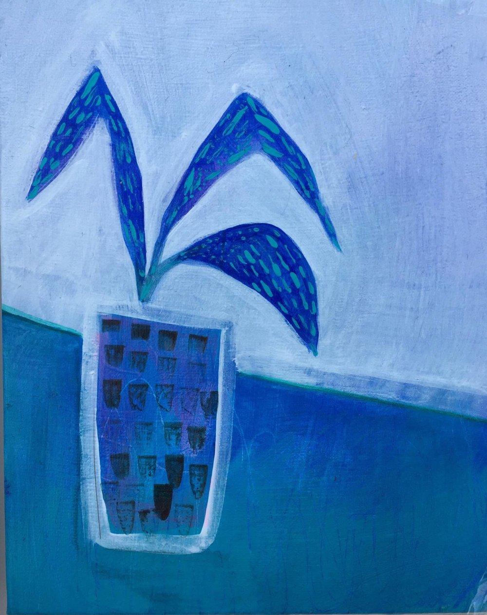Blue fern.jpg