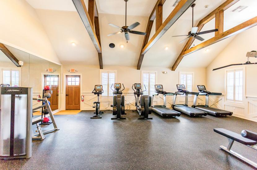 Showfield_fitness-center-treadmills.jpg