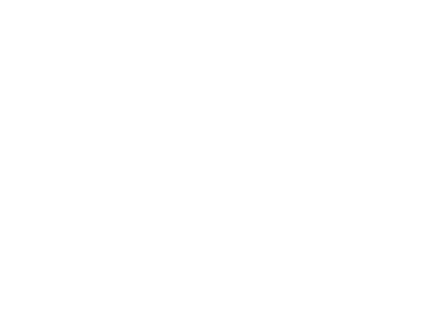 The Breakthrough Coach