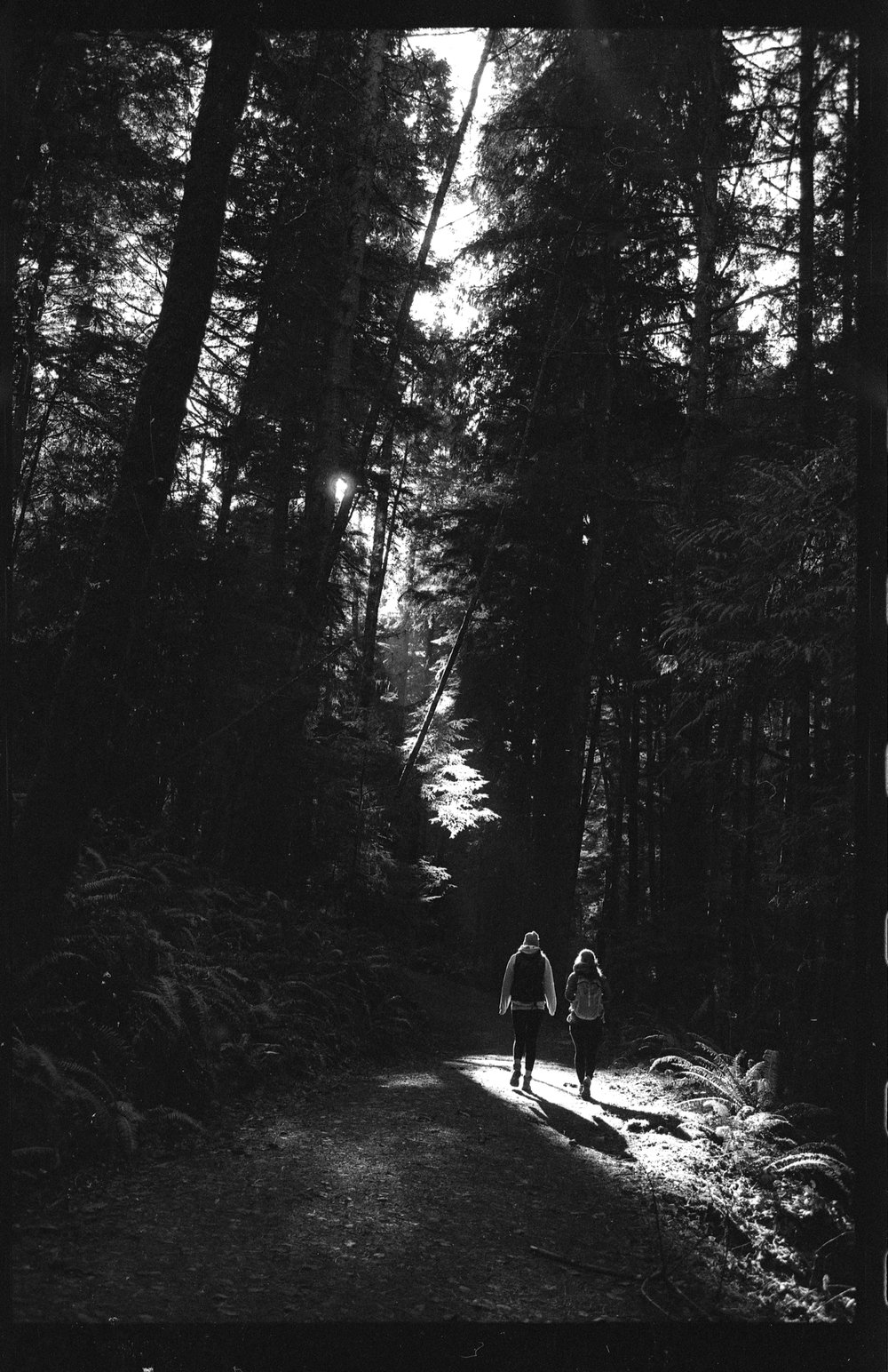 Sooke - Nikon F2 - Tri-x 400 (Pushed)