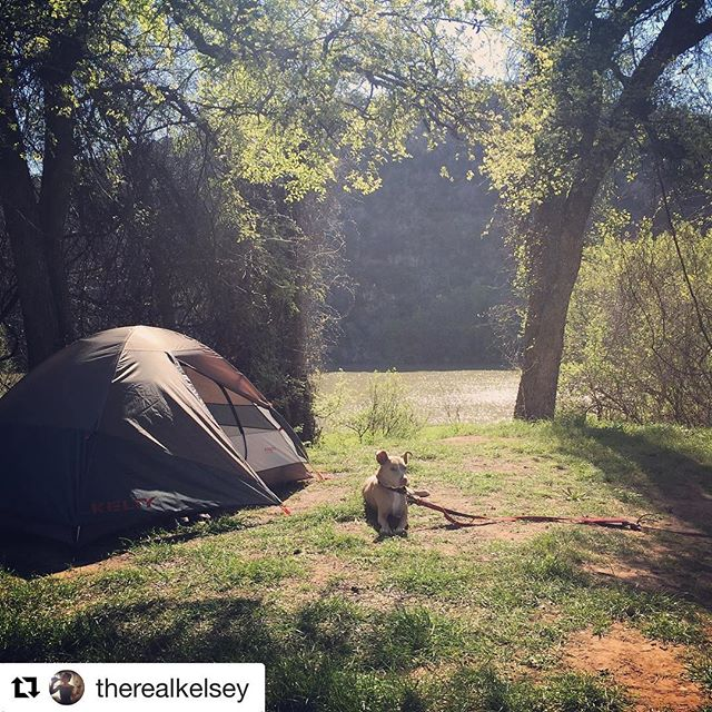 Happy first day of spring! We celebrated this weekend with a camping trip to nearby Colorado Bend State Park. #camping #springequinox #coloradobend #campingwithdogs #texas #stateparks