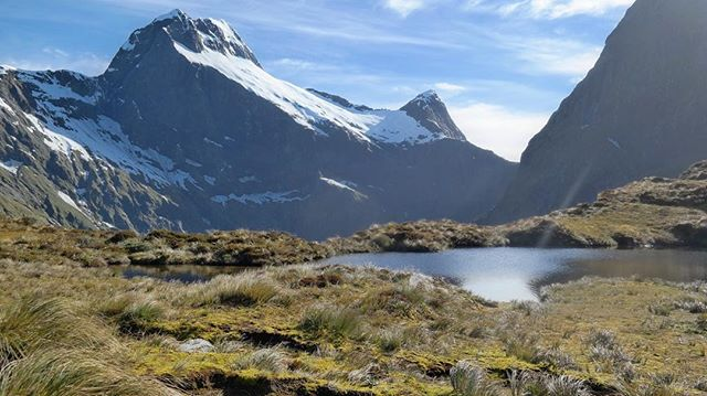 Last November we hiked the Milford Track in New Zealand. Learn how to plan your own hike by visiting the link in our bio. #milfordtrack #greatwalks #newzealand #fiordland #fiordlandnationalpark #backpacking #hiking #getoutdoors