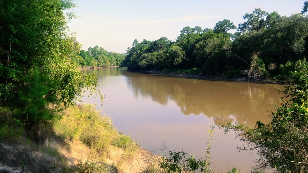 A view of Village Creek, a tributary of the Neches River and the Park's namesake.