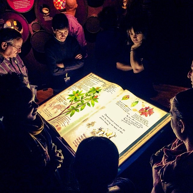 "The ""Enchanted Book"" interactive display in the American Museum of Natural History's 2013 exhibition ""The Power of Poison"" comes to life when you turn a page."
