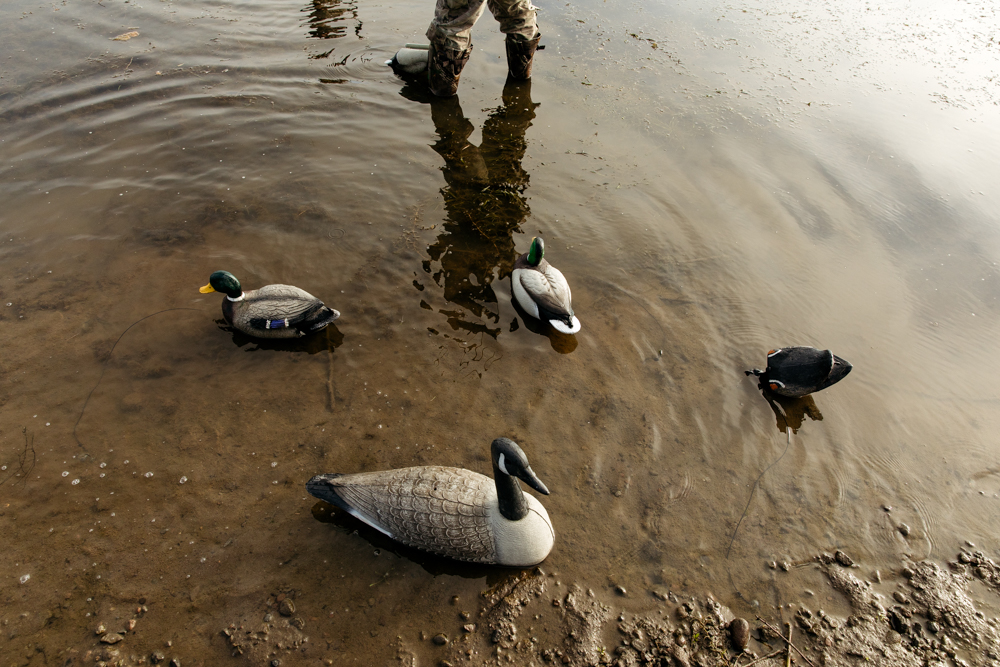 portland-oregon-pdx-pnw-waterfowl-duck-hunting-camo-swamp-mallard-ducks-geese-goose-shotgun-gun-hunters-decoys-gylfphe-photography-documentary-10