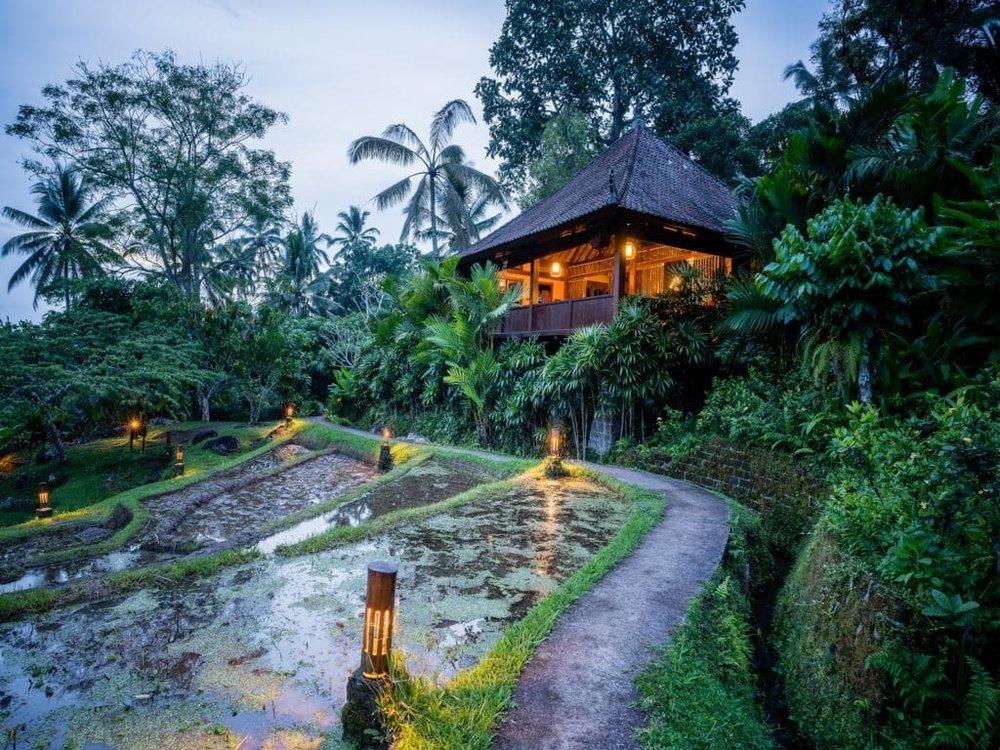 Rice-Water-Bungalow-Bali-Bali-Eco-Stay-1024x768.jpg