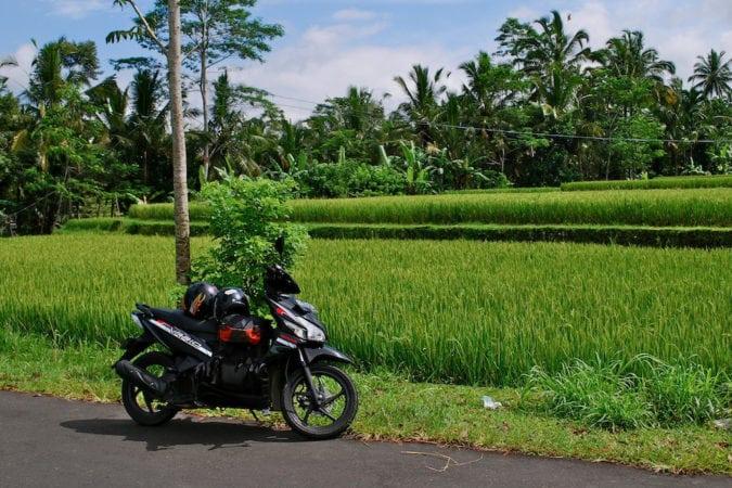 renting bike in bali.jpg
