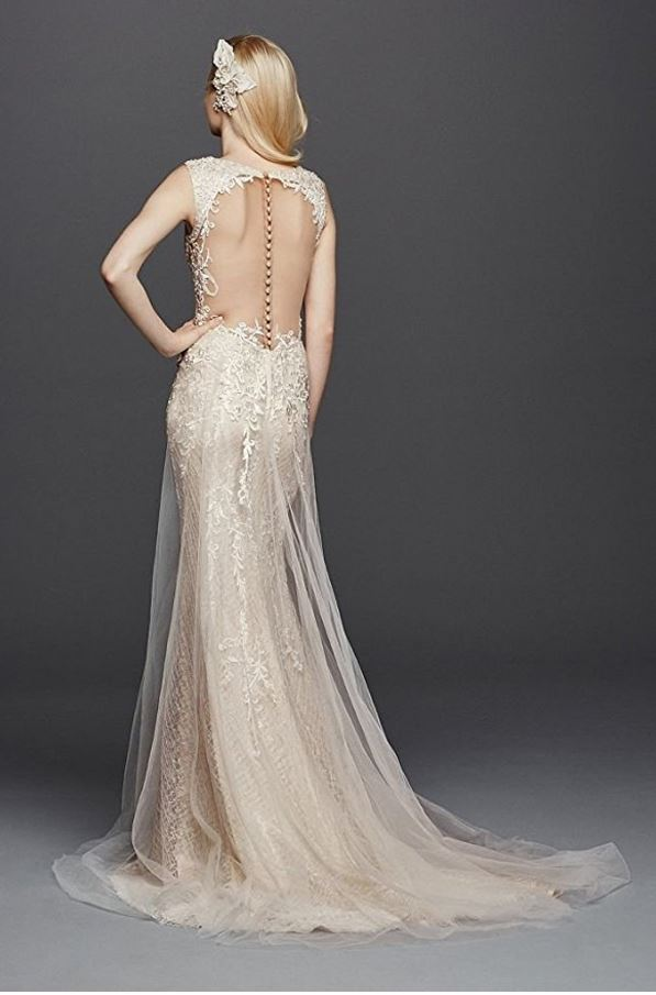 A-Line-Wedding-Dress-Backside-Amazon.JPG