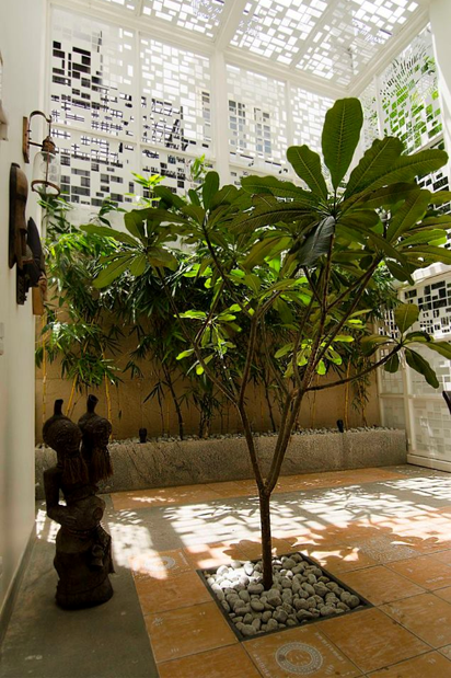Ficus-landscape-bangalore-courtyard-house-garden-frangipani-02