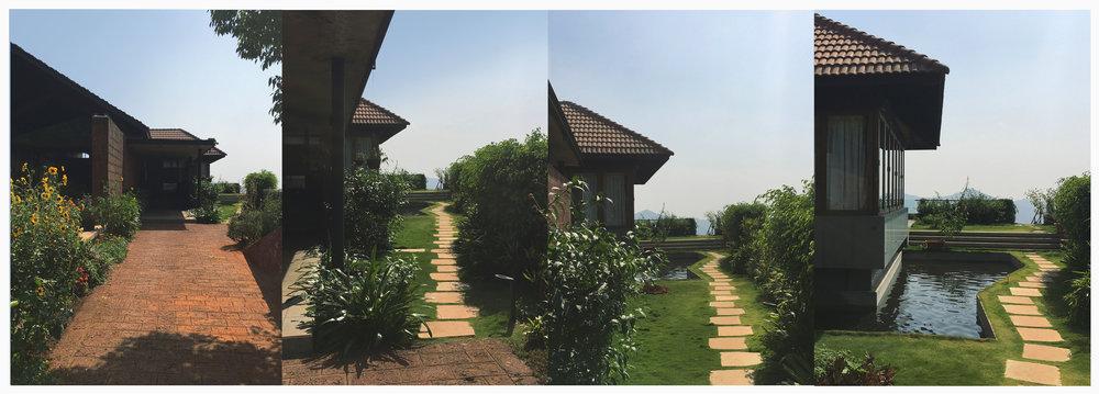 Ficus-landscape-bangalore-farmhouse-storms end-04