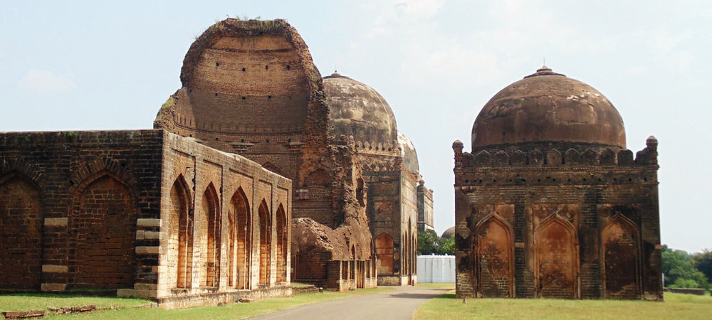 Ficus-landscape-bangalore-bahmani tomb-ASH-07