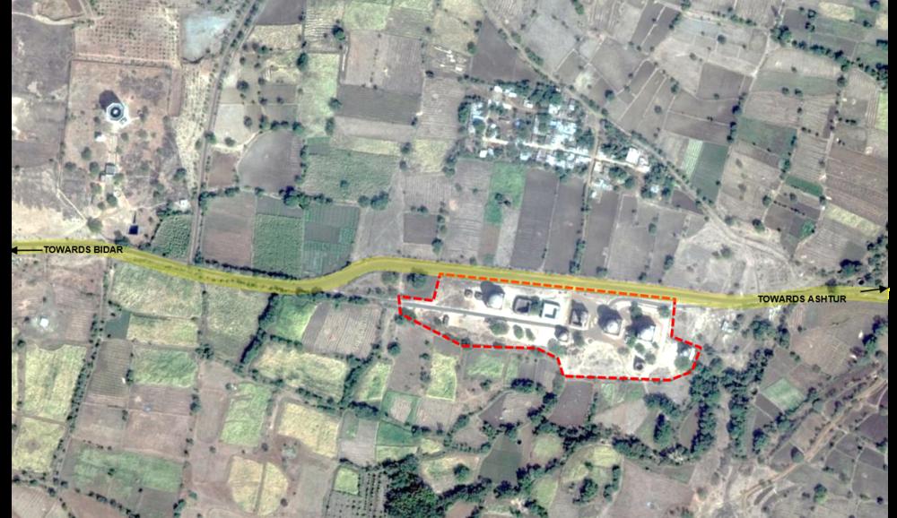 Ficus-landscape-bangalore-bahmani tomb-ASH-01